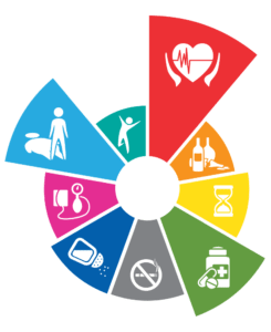 Article -1-WHO- Key chronic conditions and their risk factors